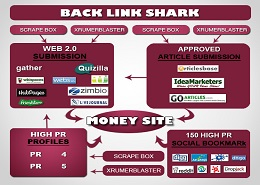 Backlink Shark